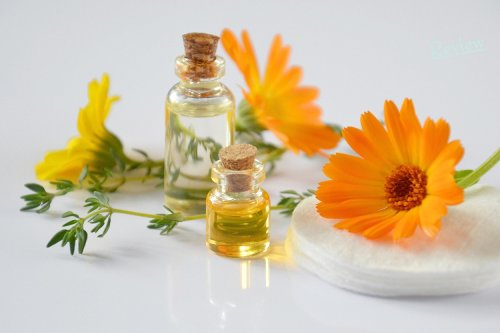6 Popular Essential Oils: What Are Their Main Uses?