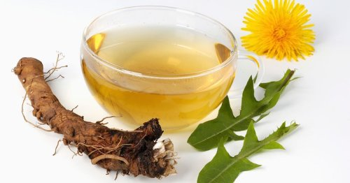 Healing Properties of Dandelion Tea, Tincture and Tonic