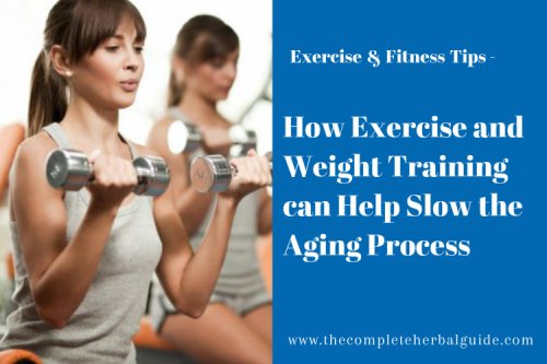 How Exercise and Weight Training Can Help Slow The Aging Process - The Complete Herbal Guide