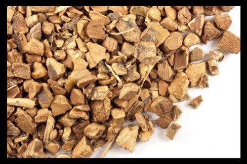 A Widely Used Traditional American Remedy for Toothaches and Rheumatism