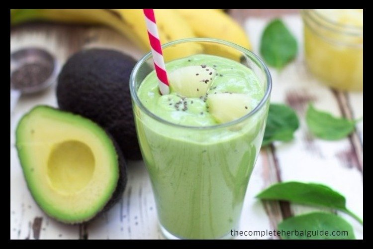 Today Learn How To Make A Delicious Avocado Smoothie Fast