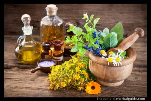 10 Invigorating Essential Oils + How To Use Them - The Complete Herbal Guide