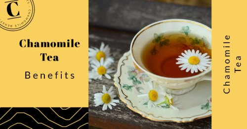 11 Incredible Chamomile Tea Benefits for Overall Health: Drink Up!