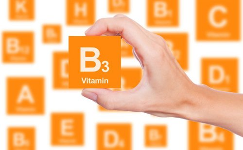 What is Vitamin B3 and What Does It Do? - The Complete Herbal Guide