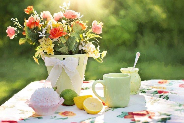Backyard Garden Basics: How to Get Started (Broadfork & More)