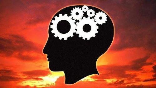 Unlock Your Brain Powers With These Extraordinary Ayurvedic Brain Tonics