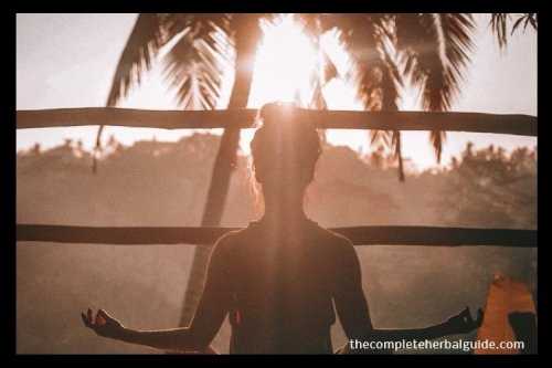 Breathing for Life: Deep Breathing Techniques With the Power to Transform Your Life
