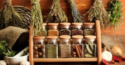 Outdoor Herb Culture Tips