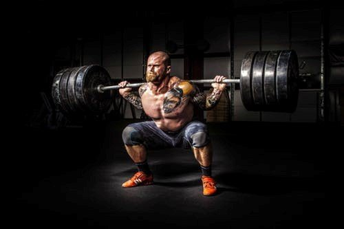 Tips To Make Your Muscles Strong