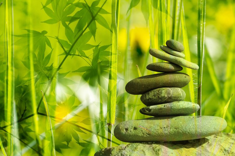 Importance of Alternative Medicine in Modern Society