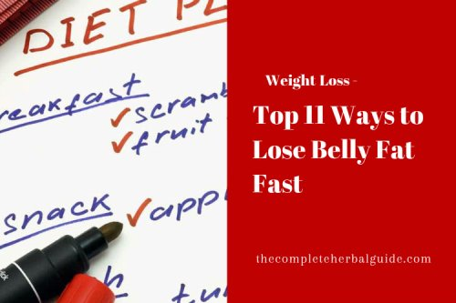 Top 11 Ways to Lose Belly Fat Fast - The Complete Herbal Guide