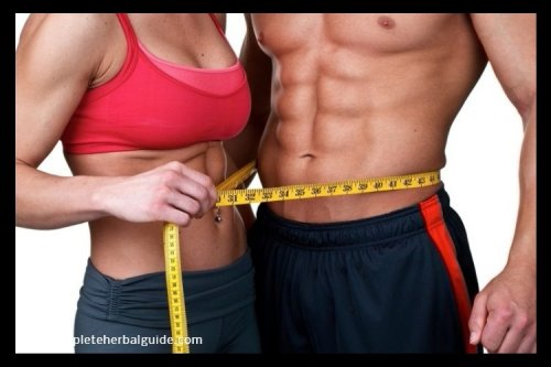 5 Simple Ways to Lose Belly Fat - The Complete Herbal Guide