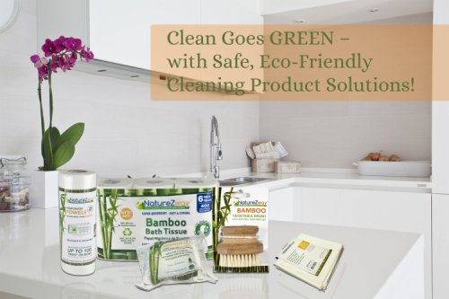 NatureZway Product Review: Safe, Eco-Friendly Cleaning Products