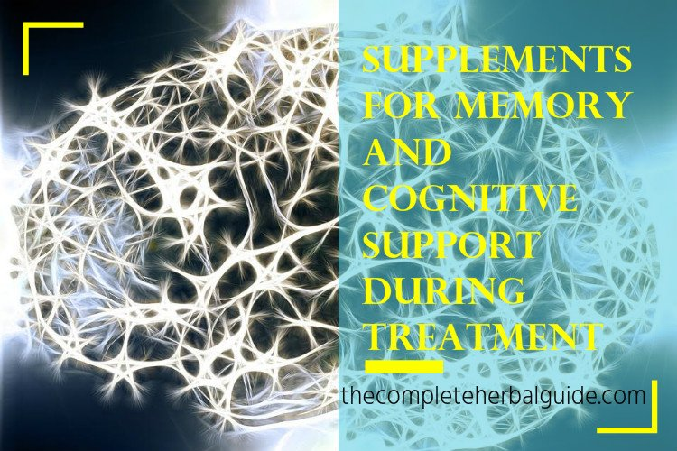 Supplements for Memory and Cognitive Support during Treatment