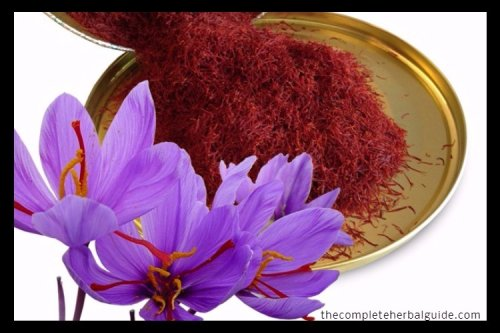 Does Ginseng and Saffron Really Increase Your Libido and Sex Drive?