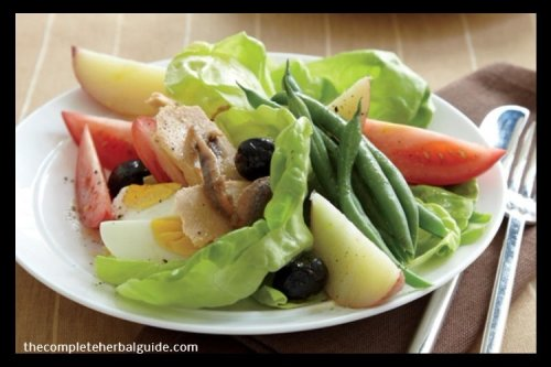Healthy Salad Recipe for Weight Loss - The Complete Herbal Guide