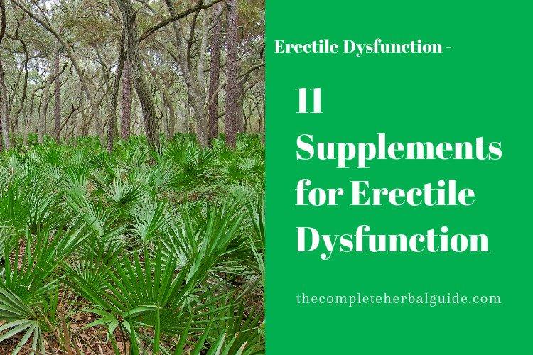 Erectile Dysfunction Herbal Remedies