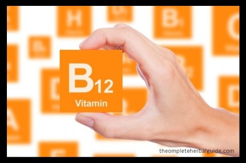 Everything You Need To Know About B12 Deficiencies