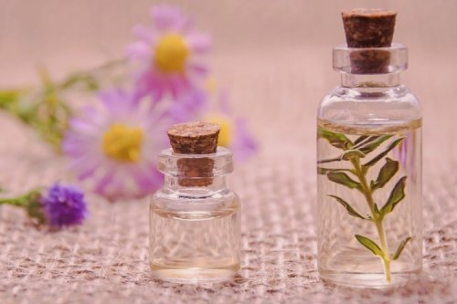 Improve Your Concentration and Focus with the Right Essential Oils