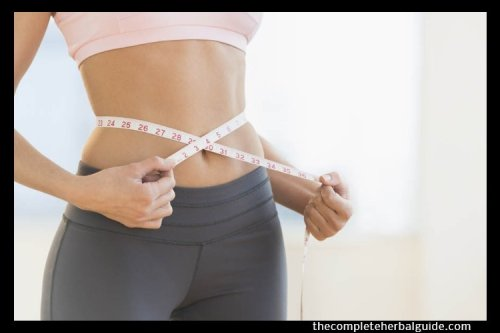 Top Foods to Help with Weight Loss - The Complete Herbal Guide
