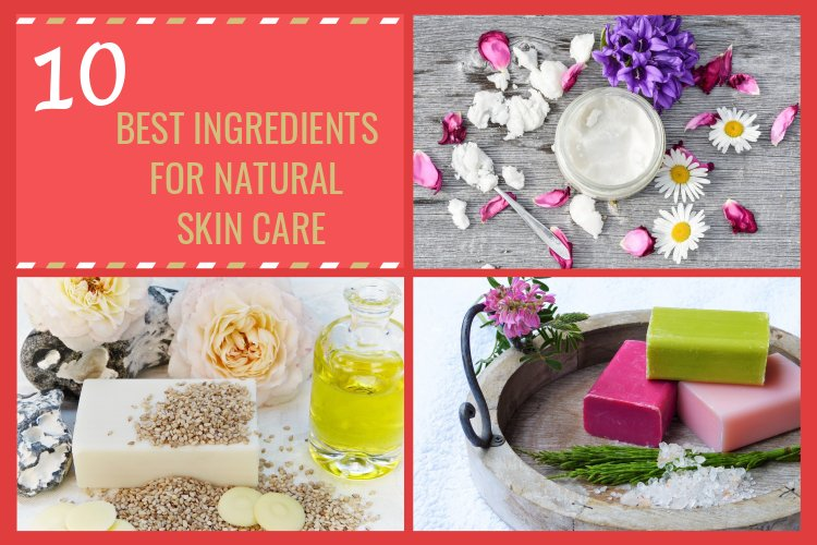 The 10 Best Ingredients for Natural Skin Care
