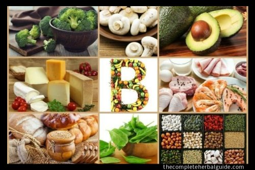 Riboflavin Foods: 15 Top Vitamin B2 Foods and Their Benefits - The Complete Herbal Guide