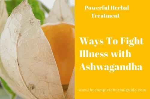 10 Proven Health Benefits of Ashwagandha