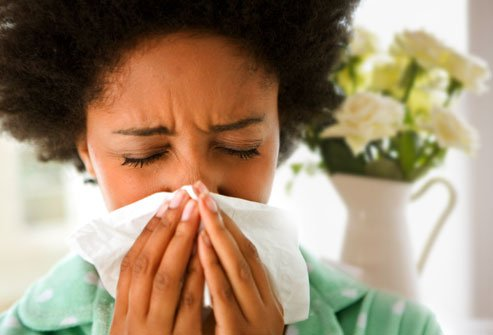 10 Herbs for Respiratory Allergies