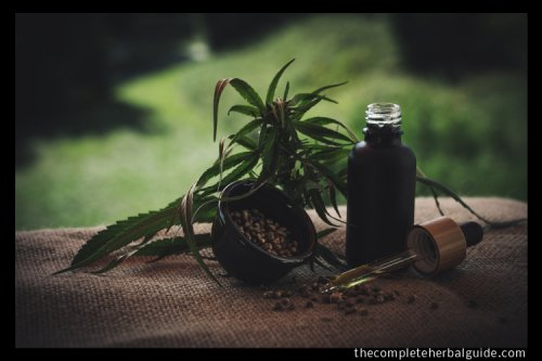 The Many Health Benefits of Hemp CBD Oil - The Complete Herbal Guide