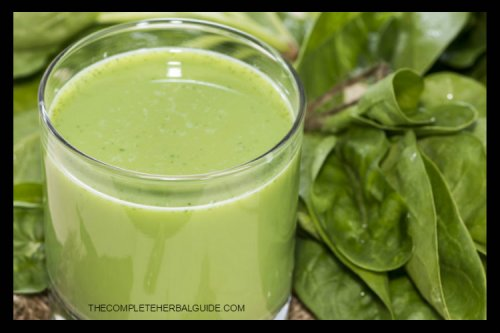 Best Protein Diet Foods to Trigger Weight Loss - The Complete Herbal Guide