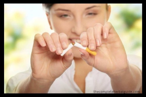 How to Kick Your Smoking Habit the Natural Way