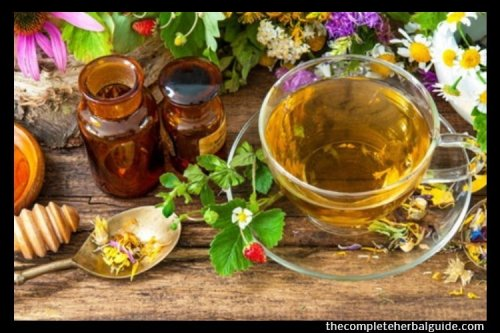 How to Dry Herbs for Tea: 7 Easy Steps To Make Herbal Tea