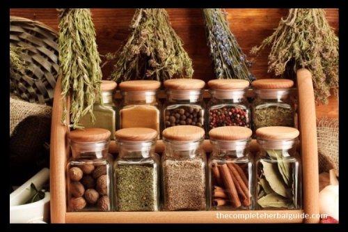 10 Medicinal Herbs You Can Grow At Home