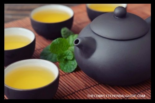 The Dangers of Green Tea: The People Who Should Stay Away from It