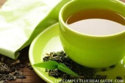 5 Amazing Health Benefits of Green Tea - The Complete Herbal Guide