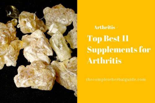 Best 11 Supplements for Arthritis