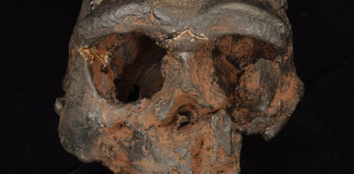 Evolutionary study suggests prehistoric human fossils 'hiding in plain sight' in Southeast Asia