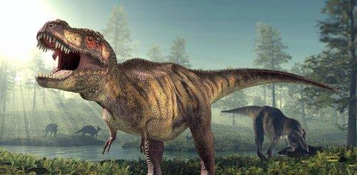 How many Tyrannosaurus rex walked the Earth?