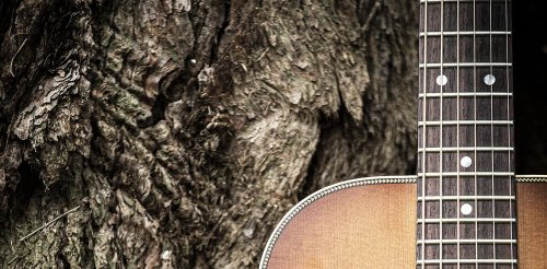 Friday essay: the guitar industry's hidden environmental problem — and the people trying to fix it