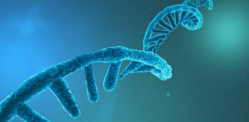 Three ways RNA is being used in the next generation of medical treatment