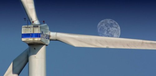 How robots could limit the environmental impact of offshore windfarms