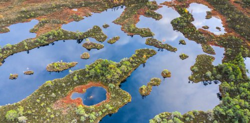 Peatlands worldwide are drying out, threatening to release 860 million tonnes of carbon dioxide every year