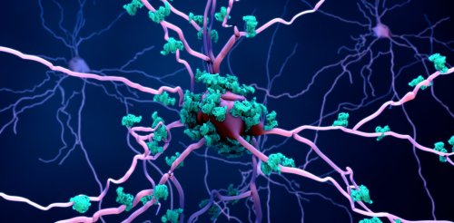 Alzheimer's: mouse study may have uncovered drug that can prevent the disease