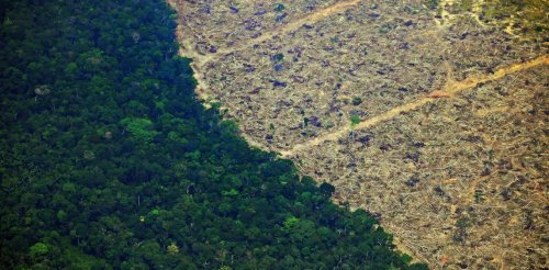 Brazil's economic crisis, prolonged by COVID-19, poses an enormous challenge to the Amazon