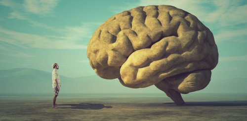 Consciousness: how the brain chemical 'dopamine' plays a key role – new research