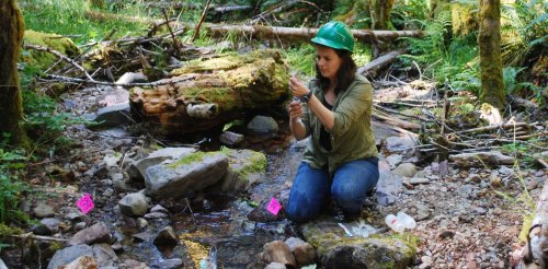 Climate change is already disrupting US forests and coasts – here's what we're seeing at 5 long-term research sites