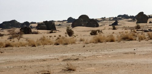 How countries alongside the Sahara can restore productive land faster