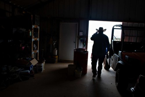 A consolidated meatpacking market leaves ranchers struggling