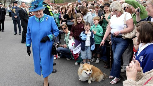 Queen Elizabeth Not Even Walking Her Beloved Dogs as She Recovers From Mystery Health Crisis