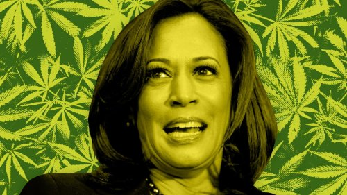 Kamala 'the Cop' the Best Hope for Legal Weed?